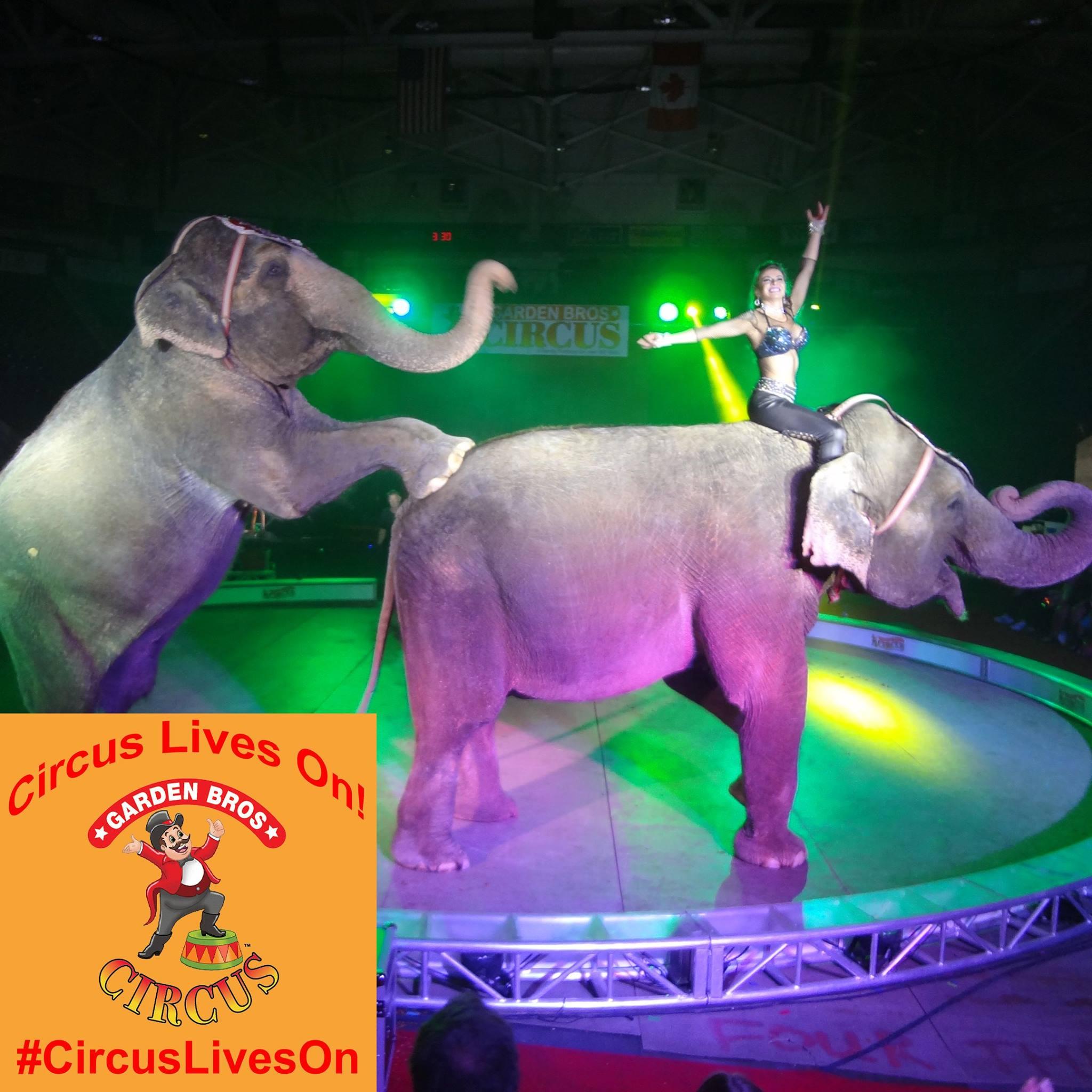 Garden Bros Circus Sapulpa Times